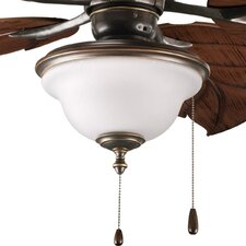 Ashmore 2 Light Ceiling Fan Light Kit