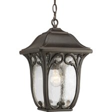 Enchant 1 Light Outdoor Hanging Lantern