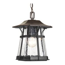 <strong>Progress Lighting</strong> 1 Light Outdoor Hanging Lantern