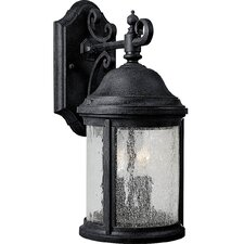 <strong>Progress Lighting</strong> Ashmore 2 Light Outdoor Wall Lantern
