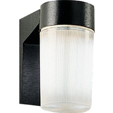 Hard-Nox Compact Fluorescent 1 Light Outdoor Wall Lantern