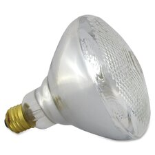 75W 120-Volt Flood Light Bulb