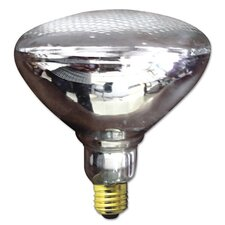 75W White 120-Volt Flood Light Bulb
