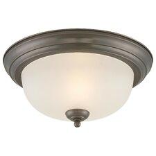 None 1 Light Ceiling Light