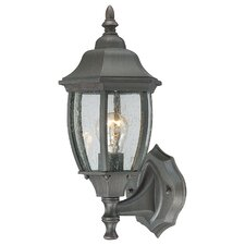 <strong>Thomas Lighting</strong> Covington 1 Light Wall Lantern