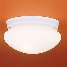 2 Light Glass Shade Flush Mount