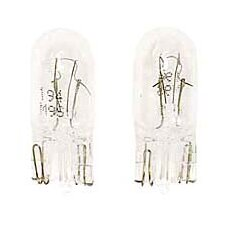 Amber 14-Volt Incandescent Mini Light Bulb (Set of 2)
