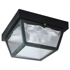 Exterior Hi-Impact 2 Light Flush Mount