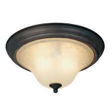 Trinity II 2 Light Flush Mount