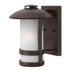 Chandler 1 Light Outdoor Wall Sconce