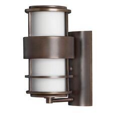 Saturn 1 Light Outdoor Wall Sconce