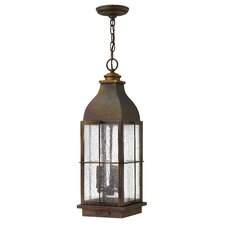 Bingham 3 Light Outdoor Hanging Lantern