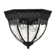 <strong>Hinkley Lighting</strong> Camelot Outdoor Flush Mount