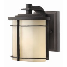 <strong>Hinkley Lighting</strong> Ledgewood Mini Outdoor Wall Lantern