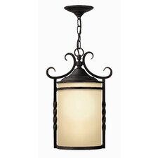 Casa 1 Light Outdoor Hanging Lantern