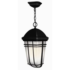 Buckley 1 Light Outdoor Hanging Lantern