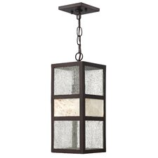 Sierra 1 Light Outdoor Hanging Lantern