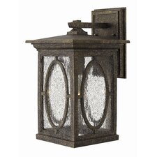Randolph 1 Light Outdoor Wall Lantern