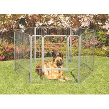 Courtyard Exercise Galvanized Steel Yard Kennel