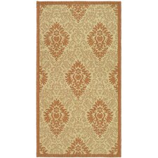 Courtyard Natural/Terracottal Outdoor Area Rug