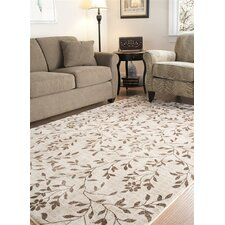 Timeless Fashion Ivory/Brown Rug