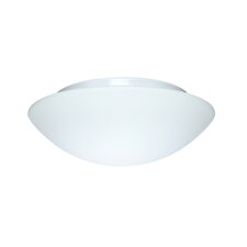 <strong>Besa Lighting</strong> Besa Flush Mount
