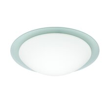 Ring 1 Light Flush Mount