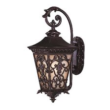 <strong>Savoy House</strong> Bientina Outdoor Wall Lantern