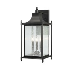 Peterson 3 Light Outdoor Wall Lantern