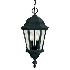 Wakefield 2 Light Outdoor Hanging Lantern