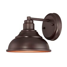 Perkins 1 Light Outdoor Wall Lantern