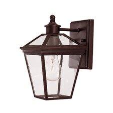 Ontario 1 Light Outdoor Wall Lantern