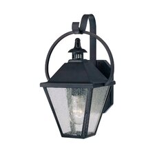 Candlewood 1 Light Outdoor Wall Lantern