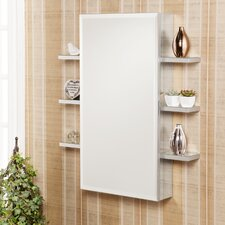 <strong>Wildon Home ®</strong> Douglas Wall Mounted Jewelry Armoire with Mirror