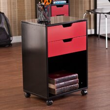 <strong>Wildon Home ®</strong> Benton 2 Drawer Multipurpose Storage Cabinet