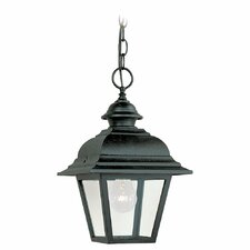 Bancroft 1 Light Outdoor Pendant