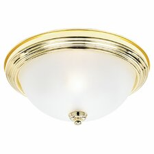 "<strong>Sea Gull Lighting</strong> Rialto 5.5"" 2 Light Flush Mount"