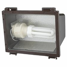1 Light Floodlight