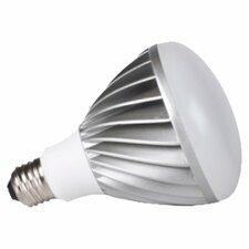 LED Energy Star 15W 120-Volt LED Light Bulb