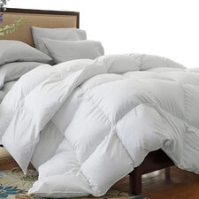 Oversized 330 Thread Count All-Seasons Down Blend Comforter