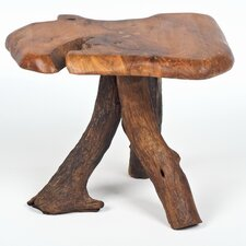 Tree Root Furniture Side Table