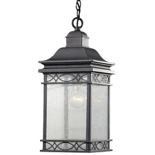 Liberty 1 Light Outdoor Hanging Lantern