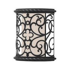 Chameleon Outdoor Wall Sconce