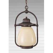 McCoy 1 Light Outdoor Hanging Lantern