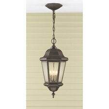 Martinsville 3 Light Outdoor Hanging Lantern