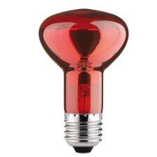 Reflektorlampe in Infrarot