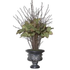Sweet Salal Evergreen Floor Plant in Urn