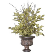 Sugary Salal Evergreen Floor Plant in Urn