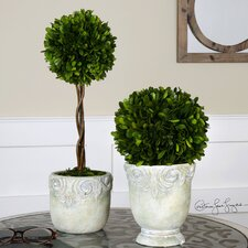 2 Piece Boxwood Ball Topiary in Planter