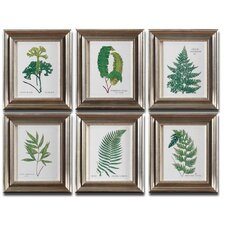Ferns 6 Piece Framed Painting Print Set